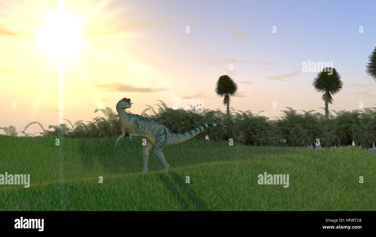 hunting dilophosaurus - Stock Image