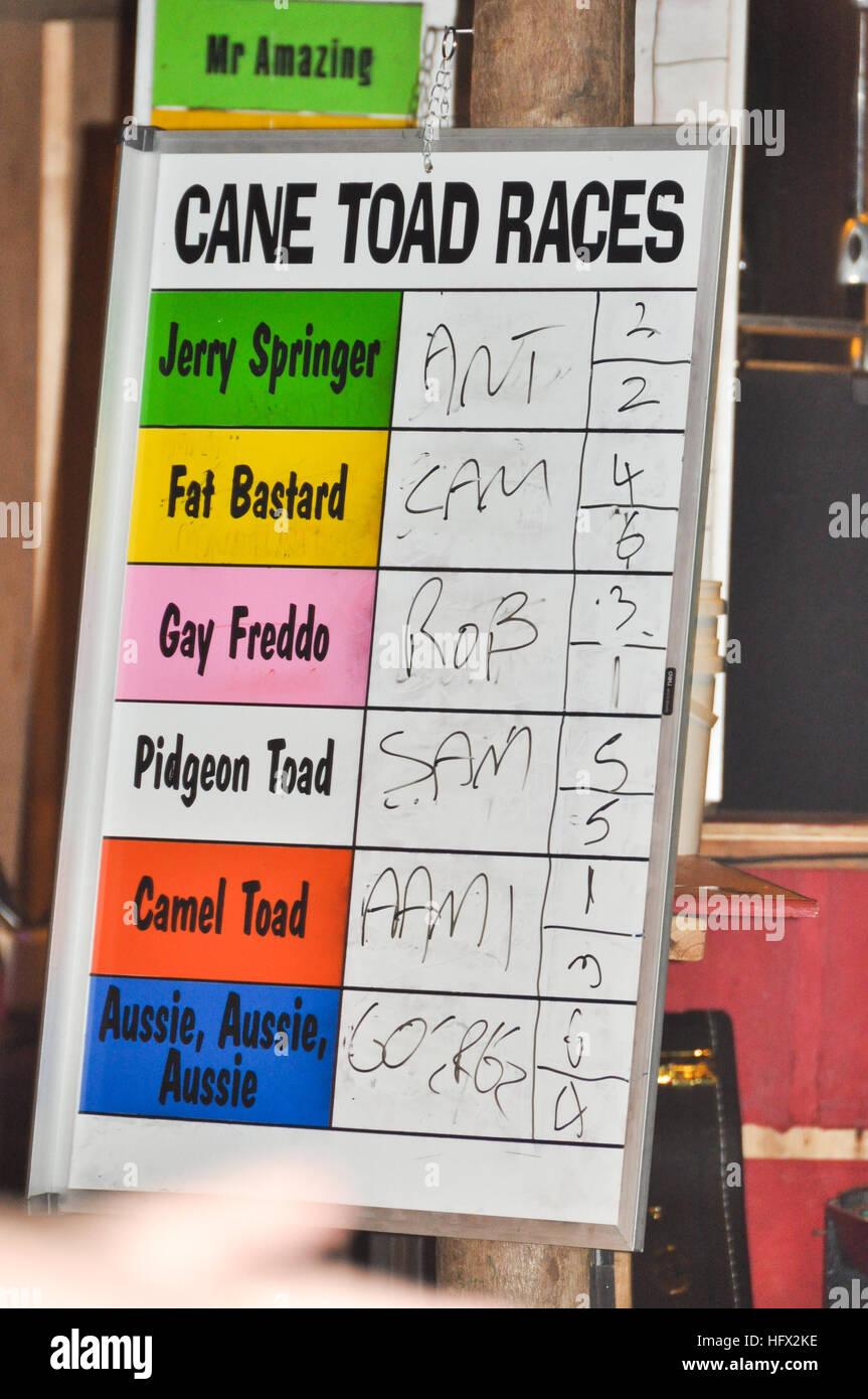 Cane Toad Races sign in pub bar, Port douglas, Australia Stock Photo