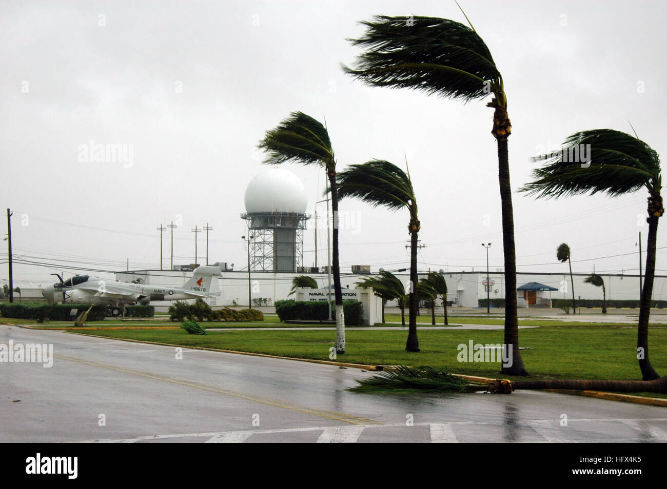 050709-N-0000B-007 Key West, Fla. (July 9, 2005) Ð Palm trees are blown around by the force of Hurricane Dennis - Stock Image