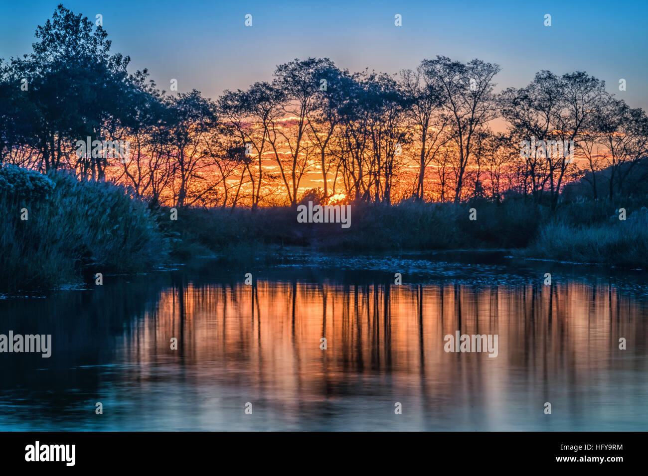 The sun was rising behind the trees and the grassy areas and the vibrant colors of the sky were reflected in the - Stock Image