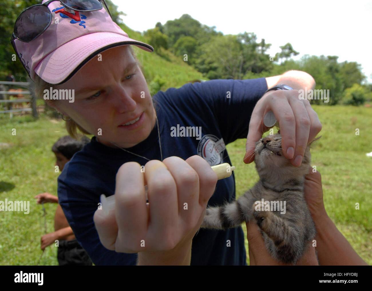 100908-N-7680E-211 PUERTO SANTO TOMAS, Guatemala (Sept. 8, 2010) Elsa Swenson, a veterinarian with the non-governmental - Stock Image