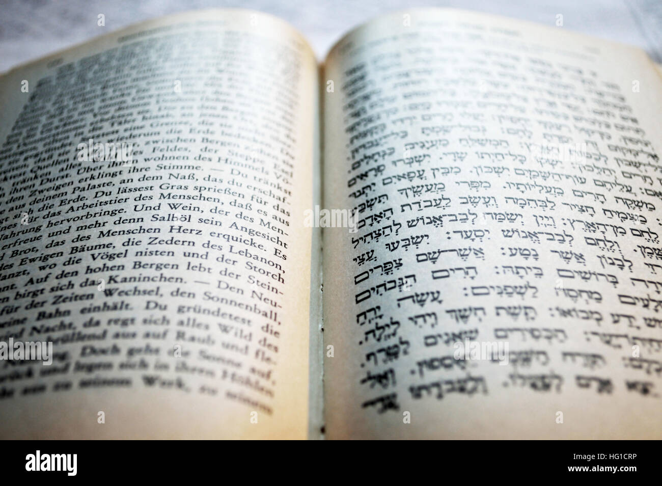 Excerpt in Hebrew writing from the Shulchan Aruch with German translation - Stock Image