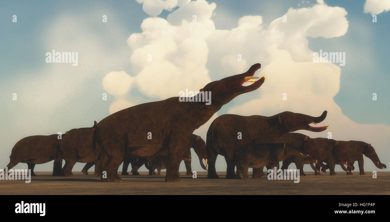 A Platybelodon herd gather on the plains of Africa to migrate to a better grazing area in the Miocene Era. - Stock Image