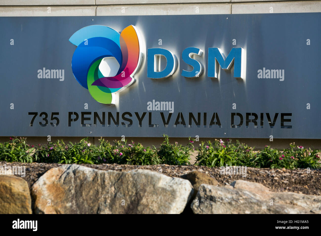 A logo sign outside of a facility occupied by DSM Biomedical in Exton, Pennsylvania on December 10, 2016. - Stock Image