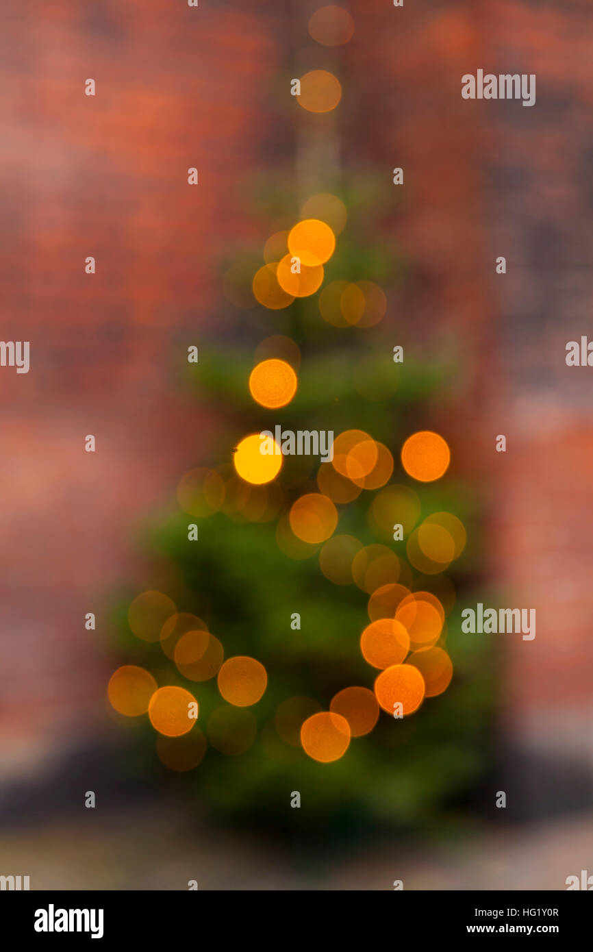 Image Of Outdoor Christmas Tree With Lights Blurry