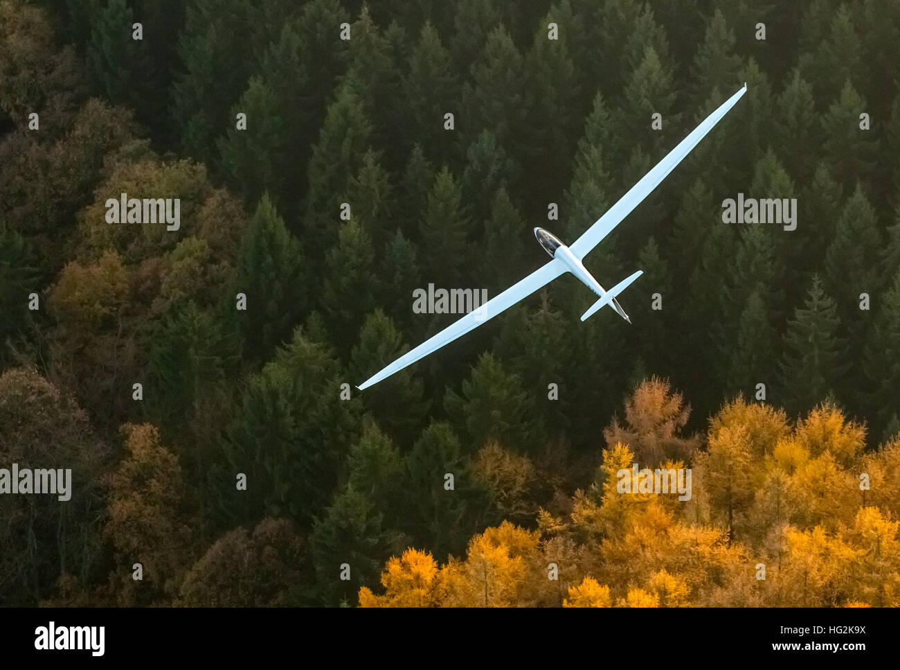 Aerial view, Duo Discus D-5443 from the LSC Oeventrop e.V. over the autumnal forests of Oeventrop, - Stock Image