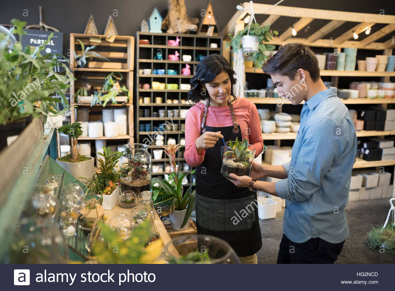 Female shop owner helping male customer shopping for terrarium in plant shop - Stock Image