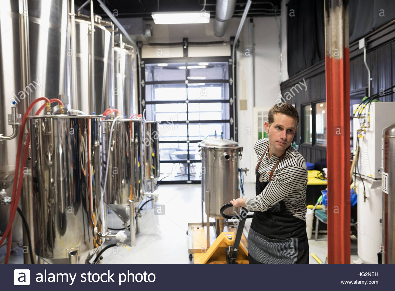 Male brewer pulling beer vat on pallet truck in brewery - Stock Image