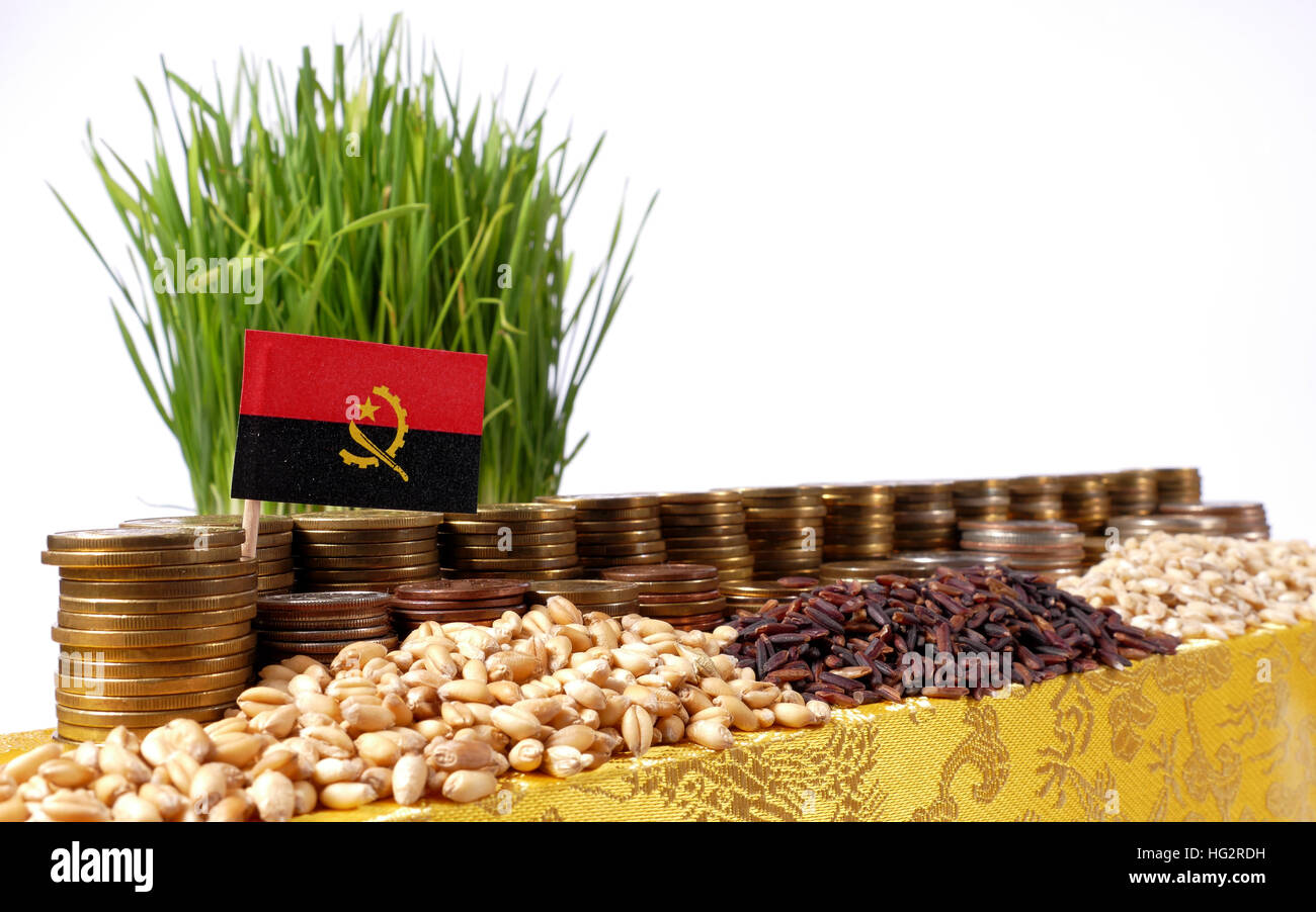 Angola flag waving with stack of money coins and piles of wheat and rice seeds - Stock Image