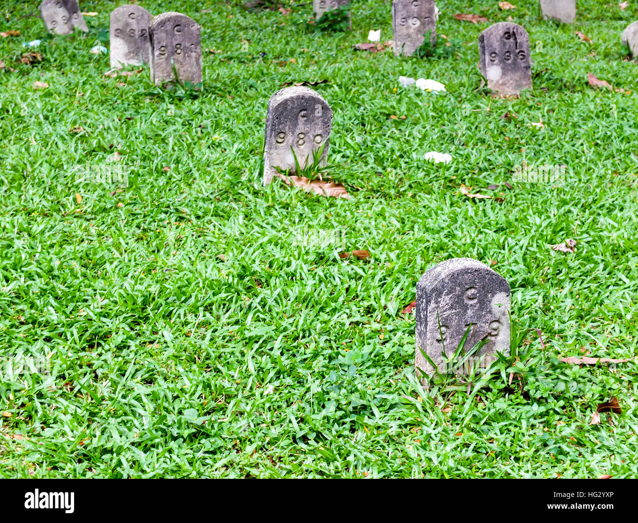 Tidy tombstone on the grass - Stock Image