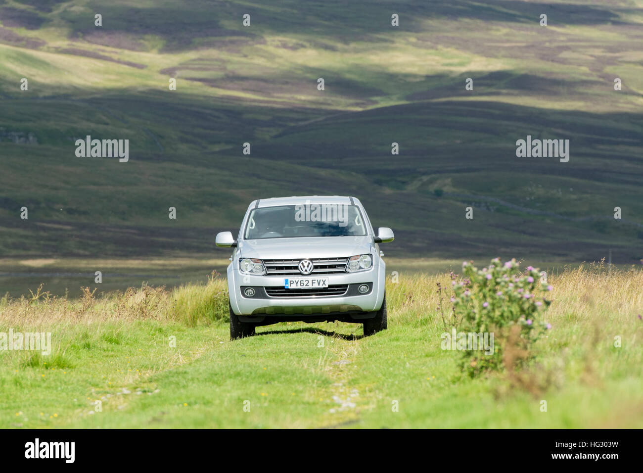 Four wheel drive VW Amarok twin cab pick up driving across upland pasture in North Yorkshire, UK. - Stock Image