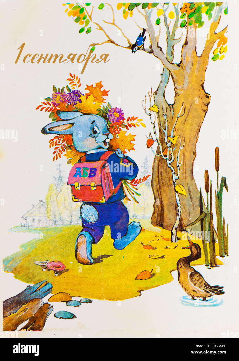 USSR - CIRCA 1990: Reproduction of antique postcard shows cute bunny goes to school with a backpack and bouquet - Stock Image
