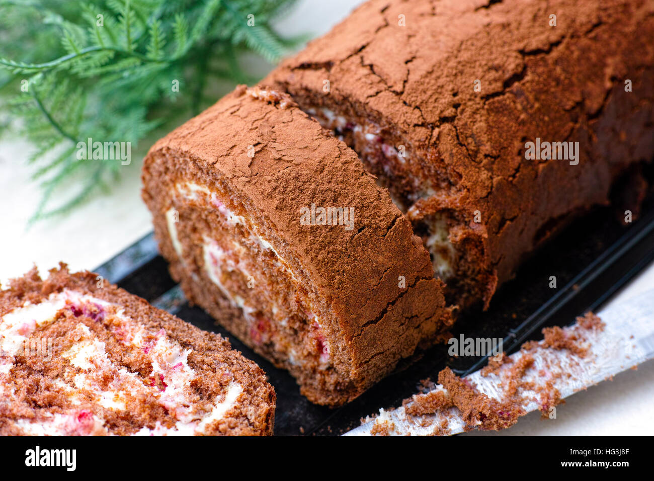 Slices of tasty chocolate sponge cake roll with cream. - Stock Image