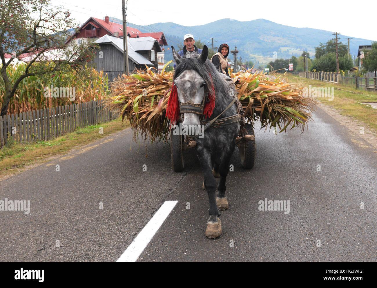 Daily scenes in the Bukovina region of northern Romania. - Stock Image