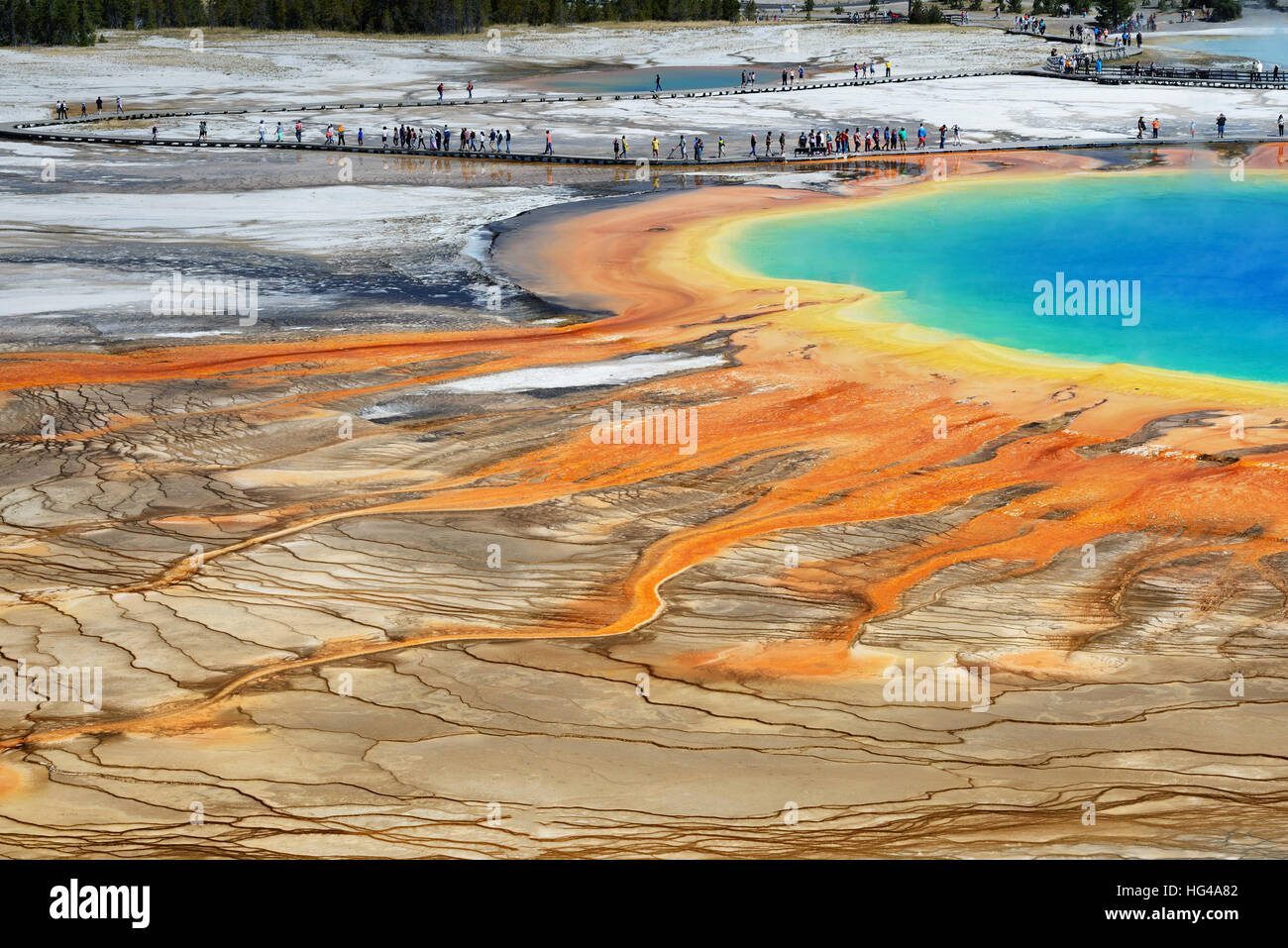 Famous trail of Grand Prismatic Springs in Yellowstone National Park from high angle view. Beautiful  hot springs - Stock Image