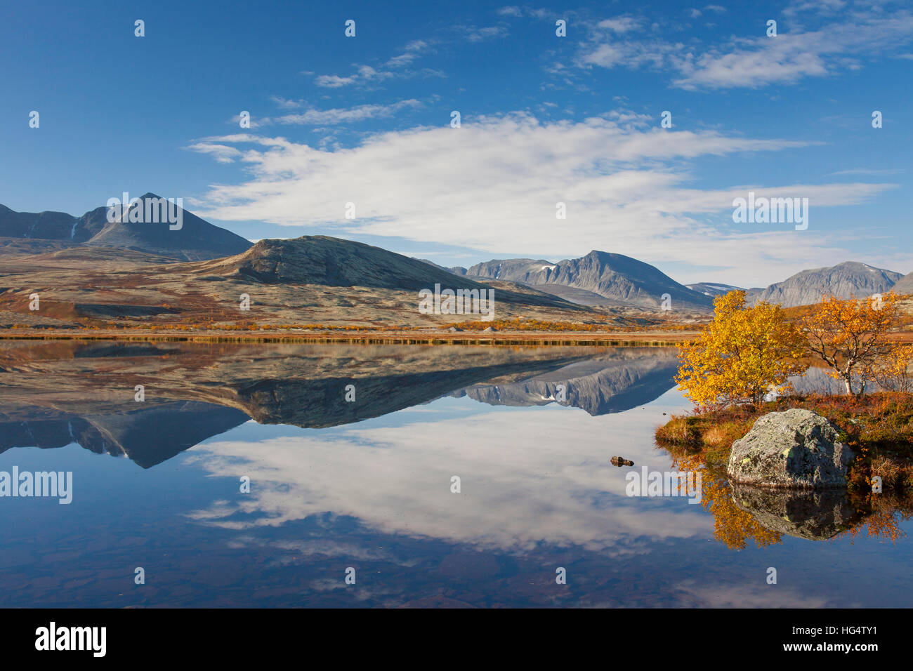 Birch trees showing autumn colours along lake, Døråldalen in Rondane National Park, Oppland, Norway - Stock Image