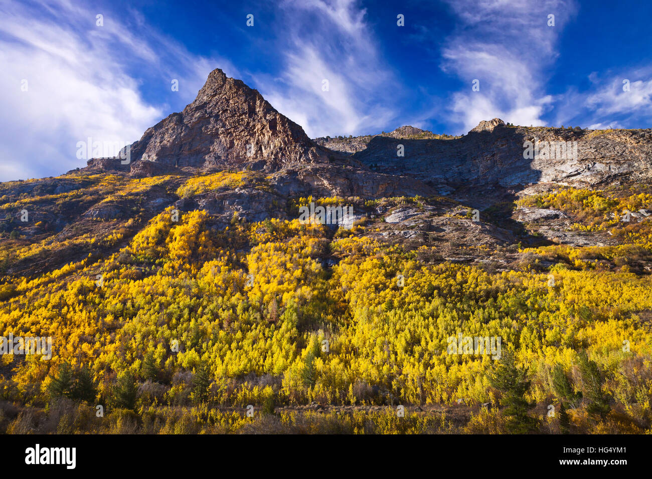 Lamoille Canyon is the largest valley in the Ruby Mountains, located in the central portion of Elko County in the - Stock Image