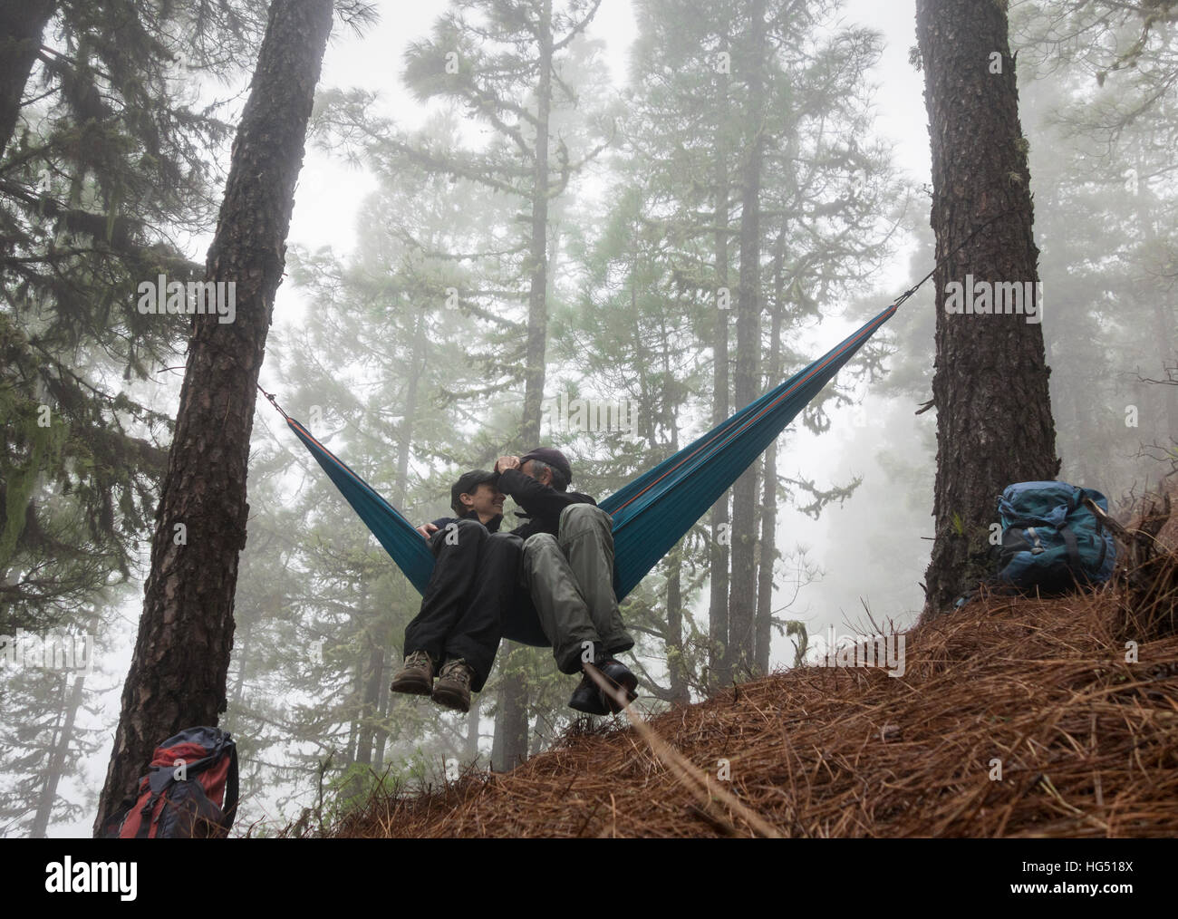 Mature couple hiking, relaxing in hammock in misty pine forest. - Stock Image