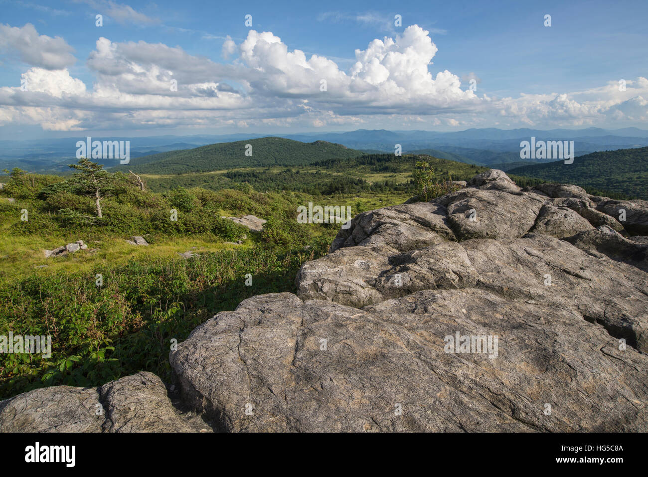 View from one of the many rocky summits of Grayson Highlands State Park, Virginia, United States of America, North - Stock Image