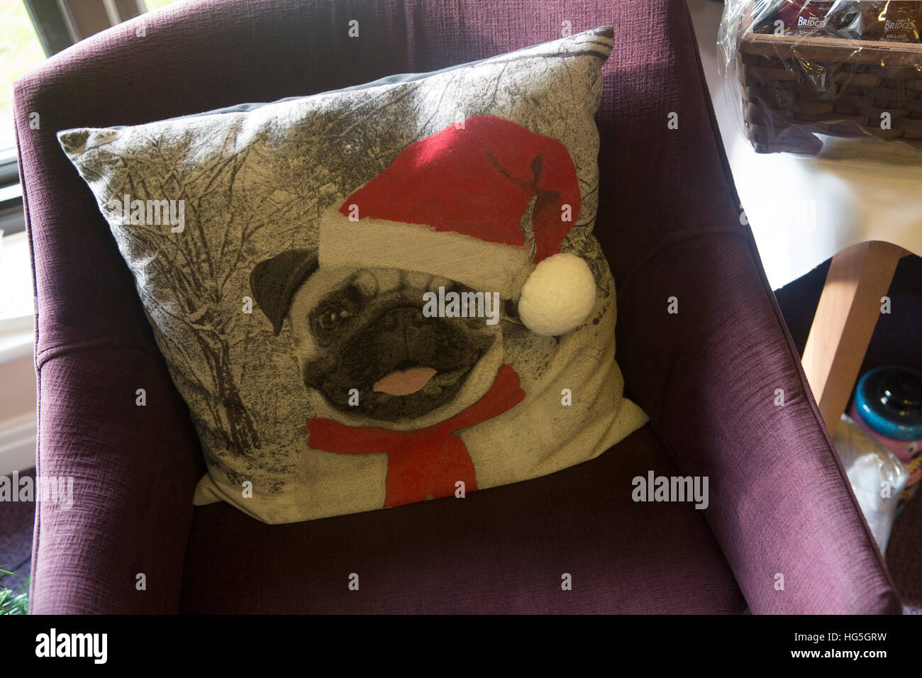Dog cushion with portrait of a pug in a father christmas hat. - Stock Image