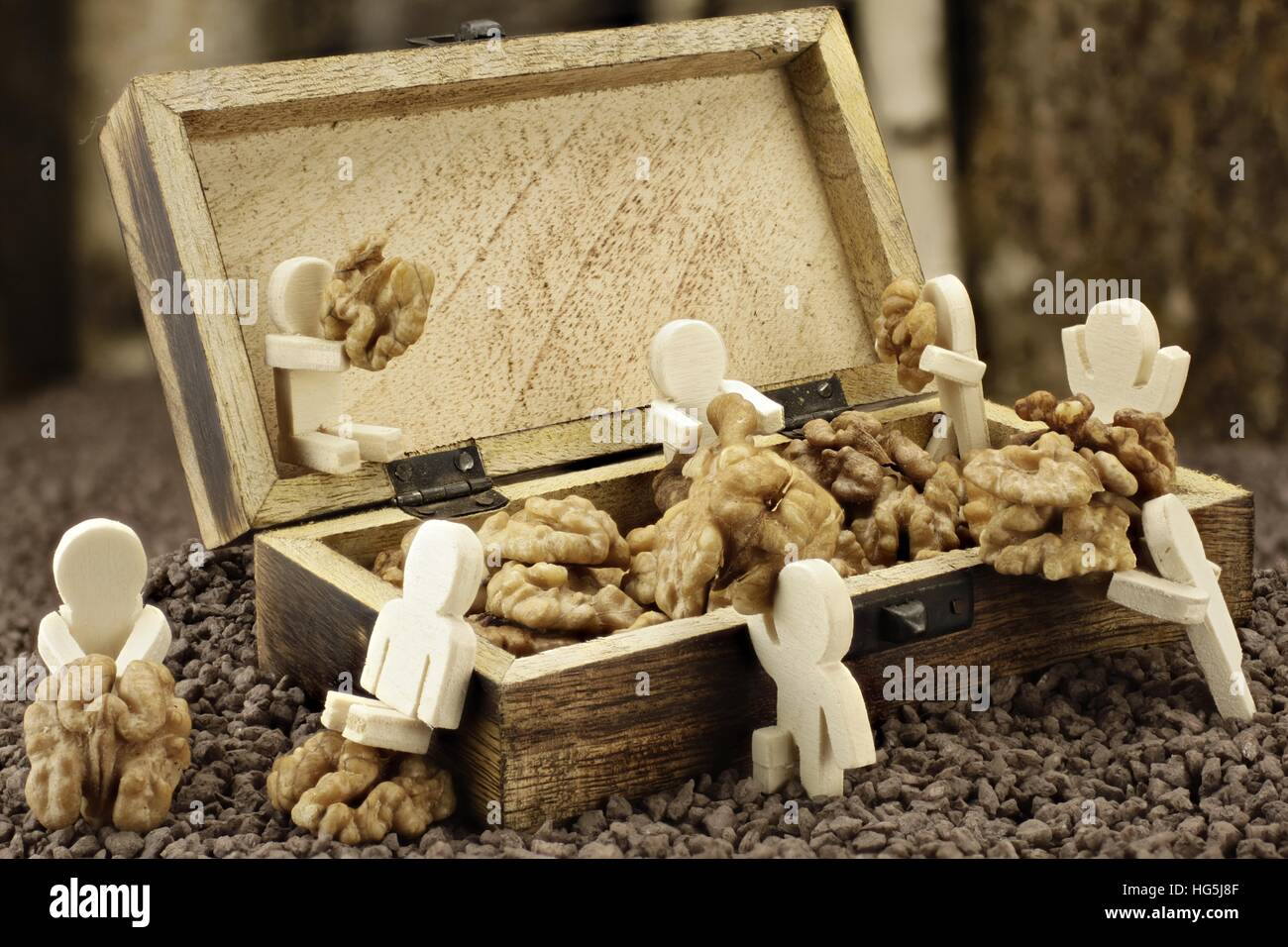 Males lay down a supply of walnuts Stock Photo