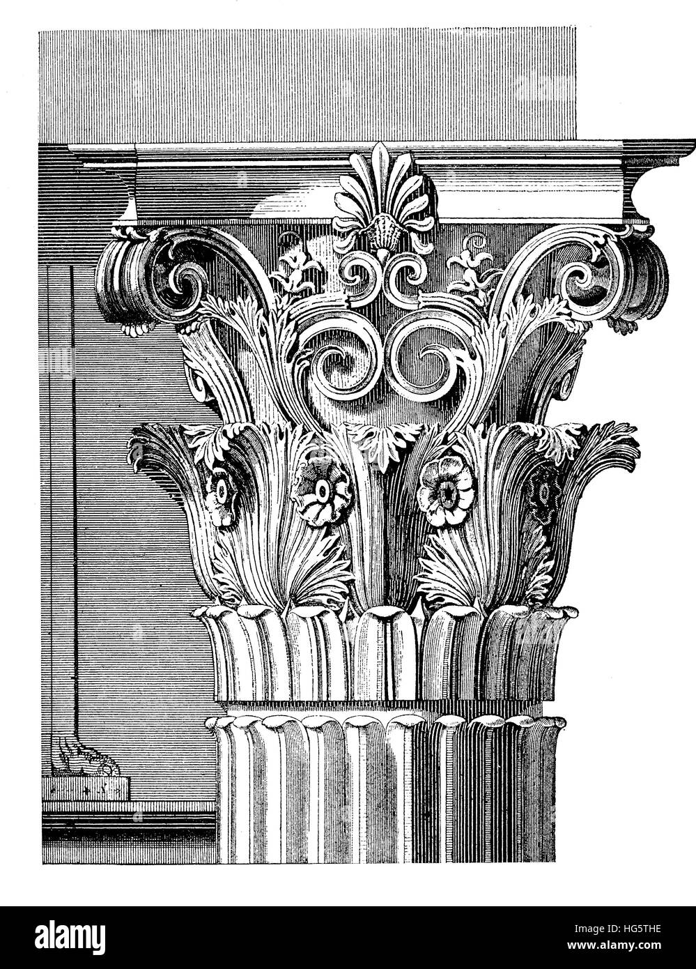 Architectural detail, elaborated Corinthian capital with acanthus leaves and scrolls,vintage engraving. Corinthian Stock Photo