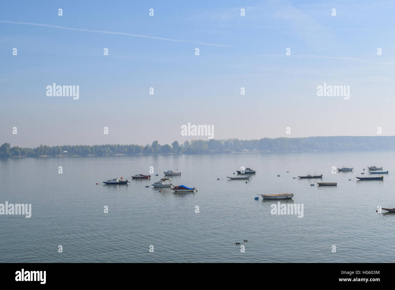 Anchored boats and swans on the river on the foggy sunny morning - Stock Image