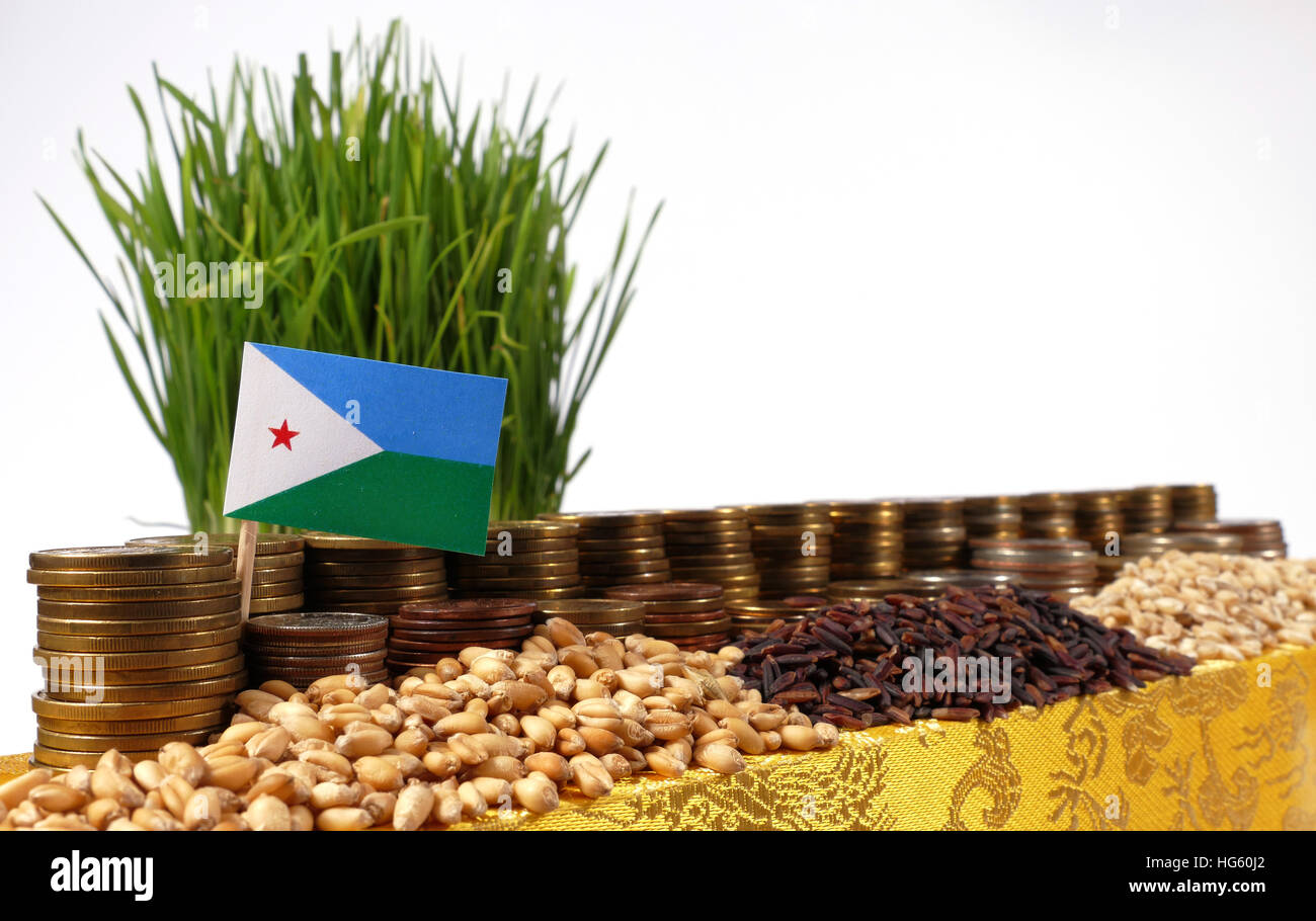 Djibouti flag waving with stack of money coins and piles of wheat and rice seeds - Stock Image