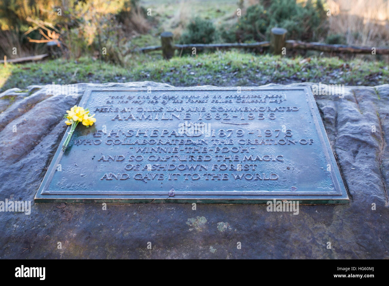 The A A Milne Memorial plaque on Ashdown Forest, - Stock Image