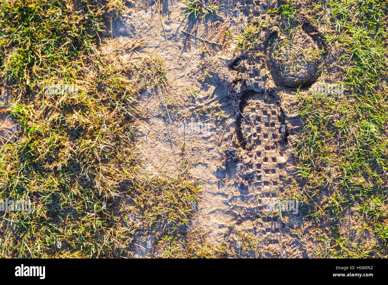Bridleway footprints showing Mountain Bike and Horse Shoe prints. - Stock Image