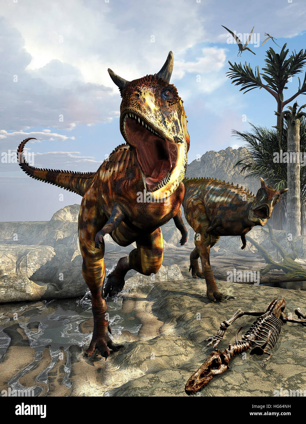 A pair of Carnotaurus dinosaurs hunting for food. - Stock Image