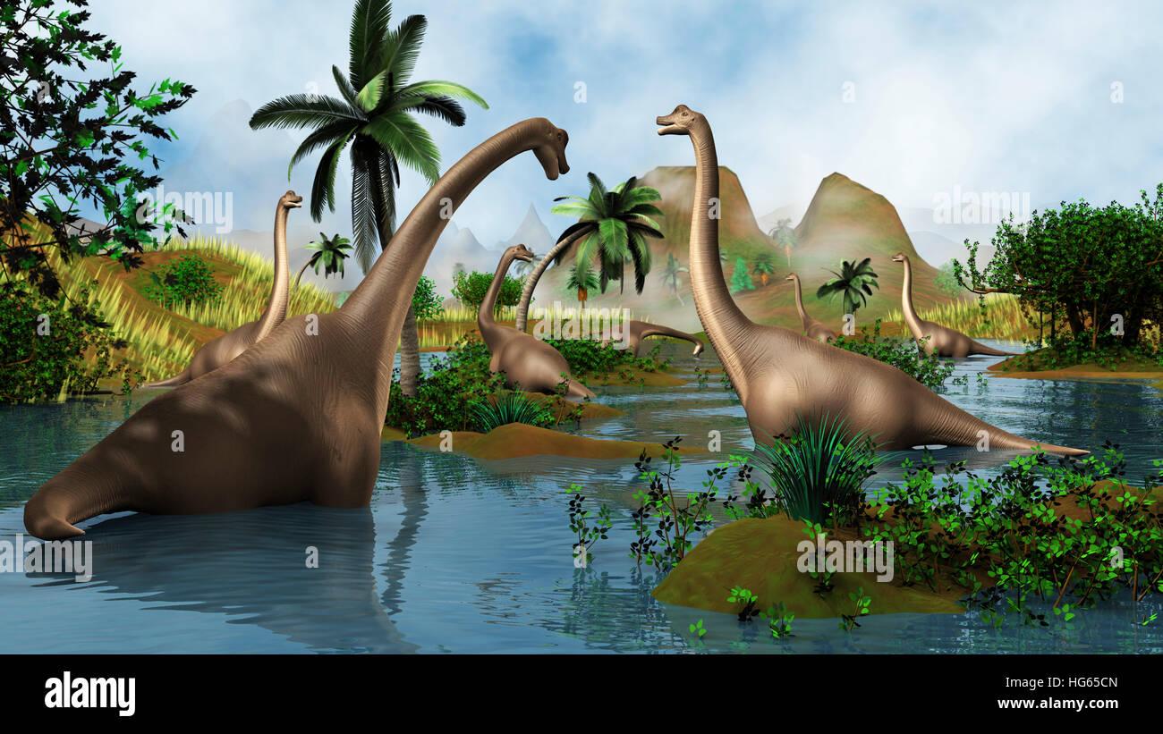 Brachiosaurus dinosaurs grazing in a prehistoric environment. - Stock Image