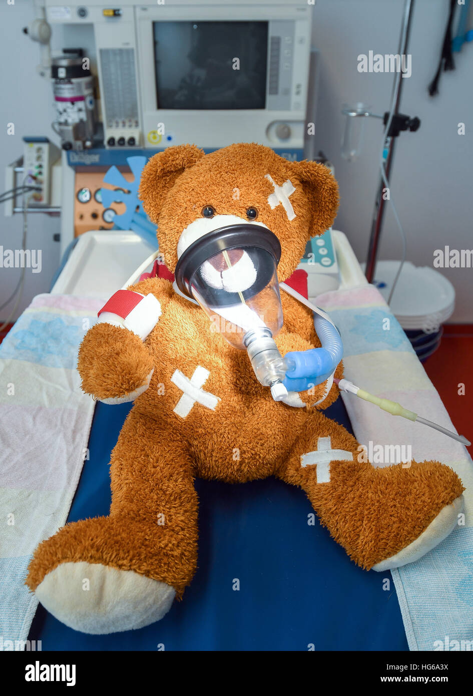 Hackenow, Germany. 17th Dec, 2016. A teddy bear on the examination table at a veterinary practice in Hackenow, Germany, - Stock Image