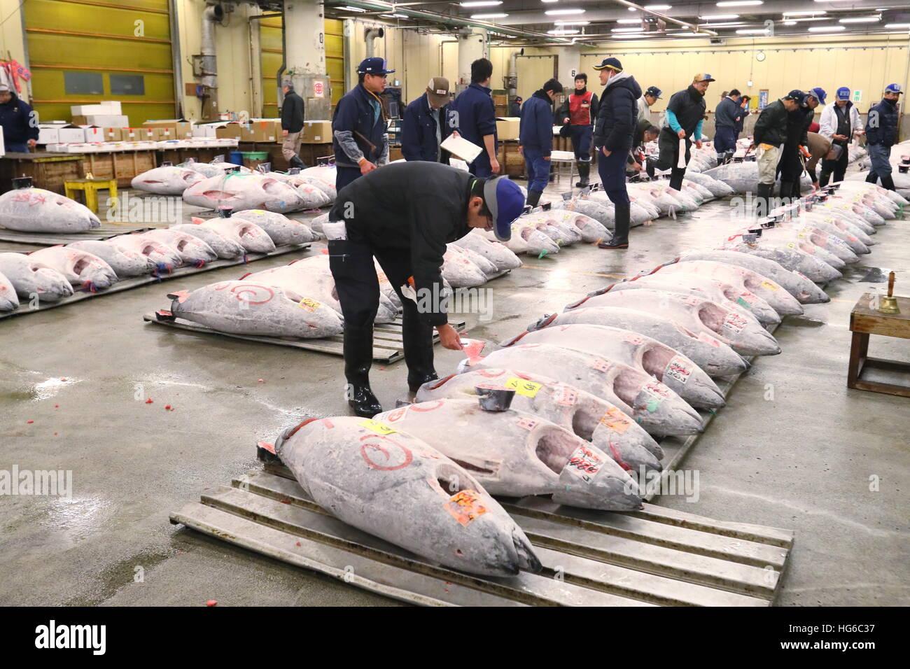 Buyers inspect frozen tuna at Tsukiji wholesale fish market on Stock