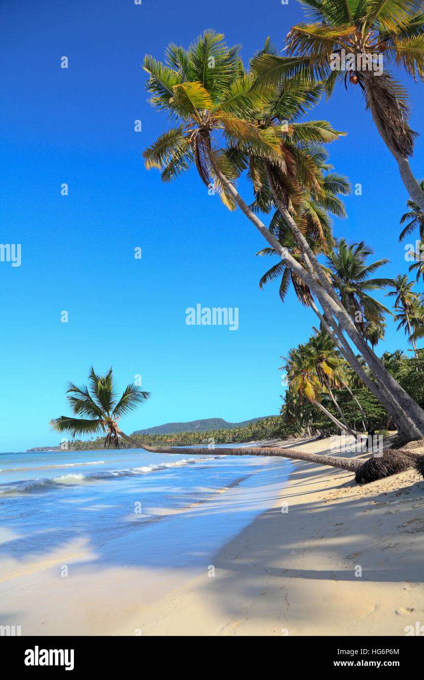 Tropical Beach near Las Galeras village in Samana area, Dominican Republic - Stock Image