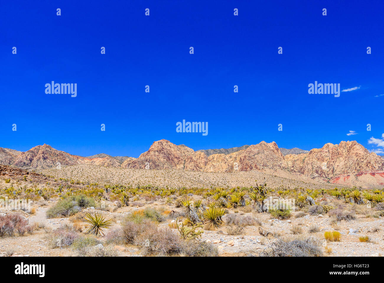 Majestic sandstone escarpment dominates the Red Rock Canyon National Conservation Area. Narrow canyons along the Stock Photo