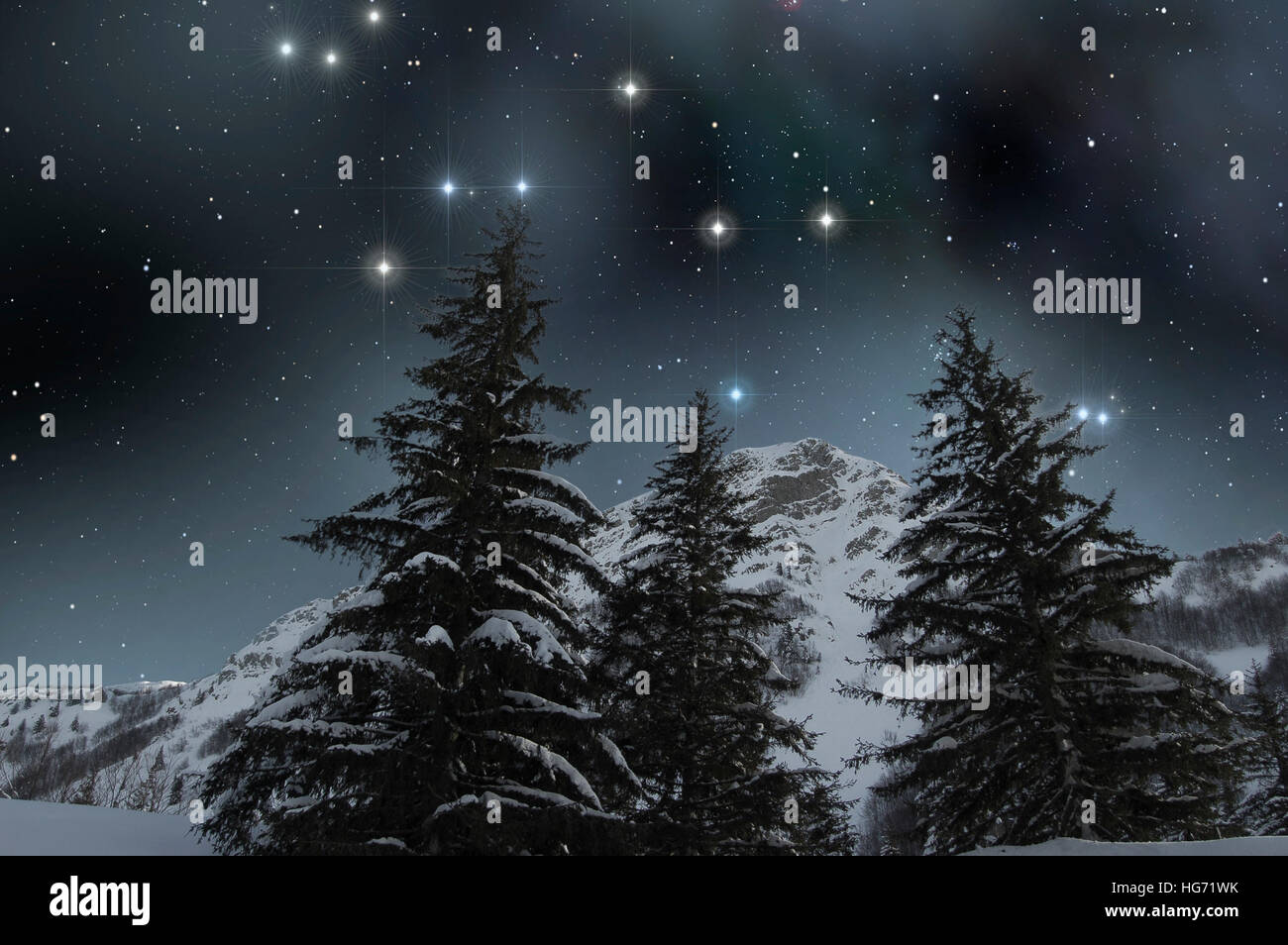 Winter landscape of snowy mountain with firs under a starry sky - Stock Image