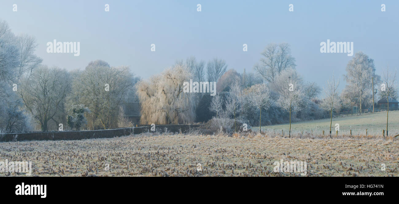 Looking towards The Mill house with trees covered in a hoar frost in winter.  Somerton, North Oxfordshire, England. - Stock Image
