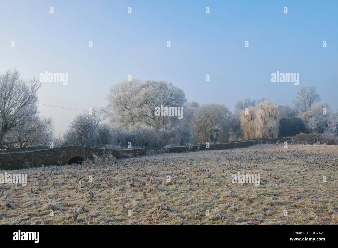 Looking towards The Mill house with trees covered in a hoar frost in winter. Somerton, North Oxfordshire, England - Stock Image