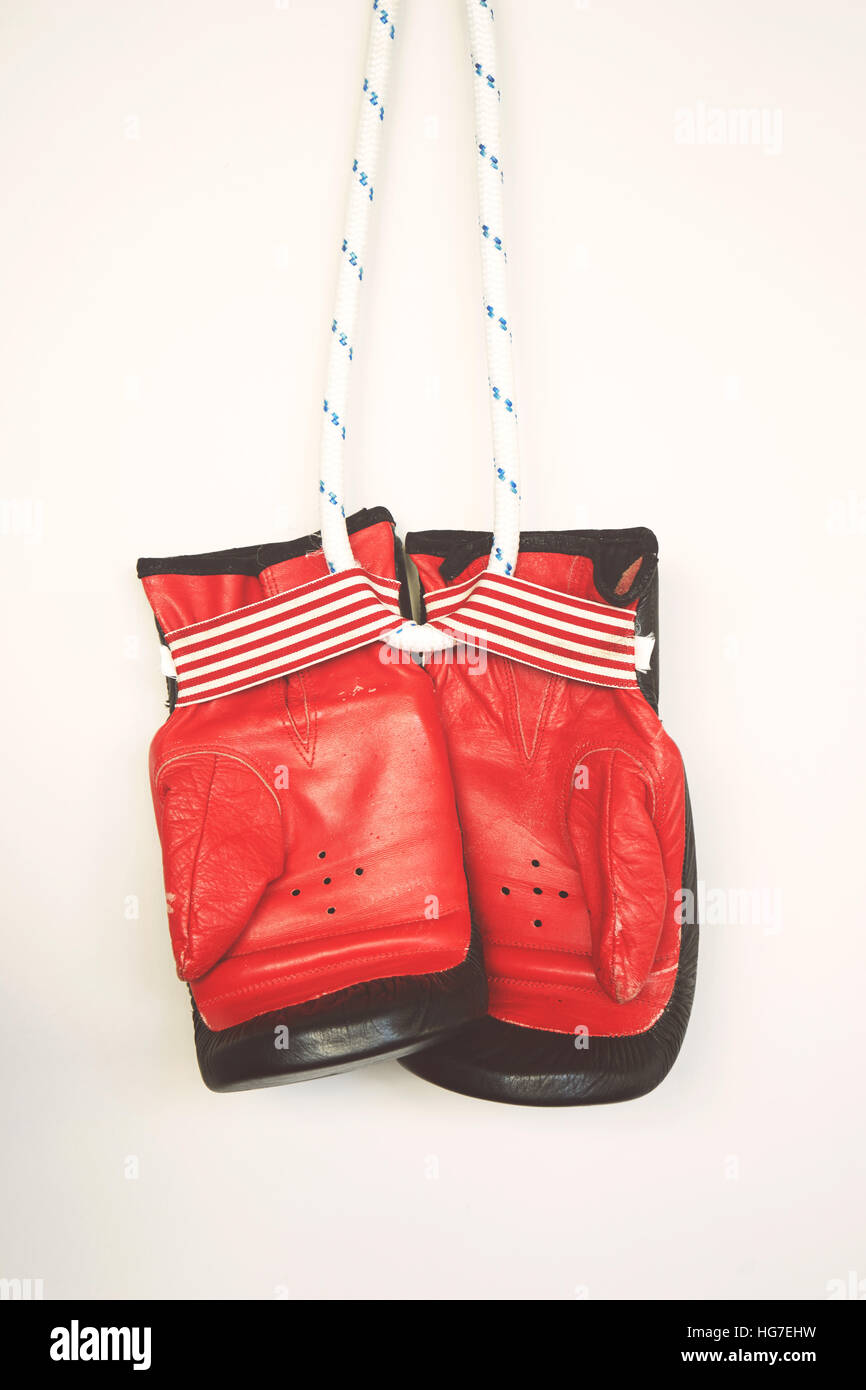 Hanging boxing gloves isolated on white background - Stock Image