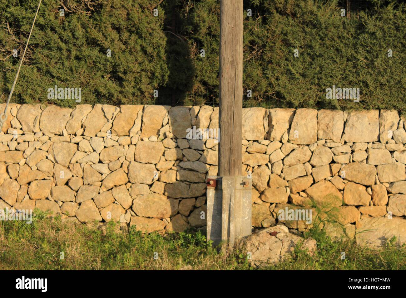 Beautiful drystone wall, hedging, and the base of a telephone poll with large rock, and wild fennel. - Stock Image