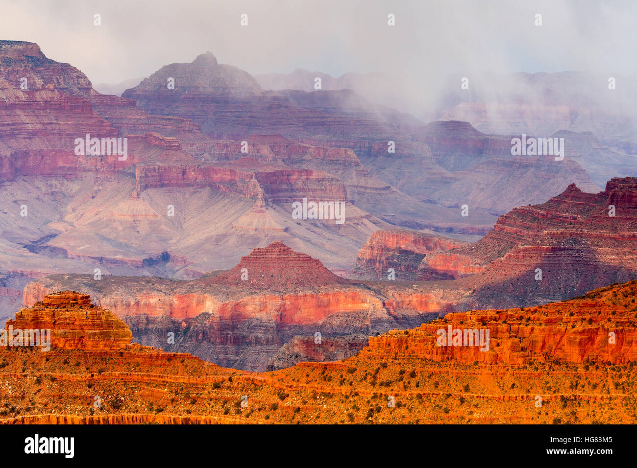 Snow showers over the Grand Canyon as sunset lights a ridge, as seen from Yavapai Point. Grand Canyon National Park, Arizona Stock Photo