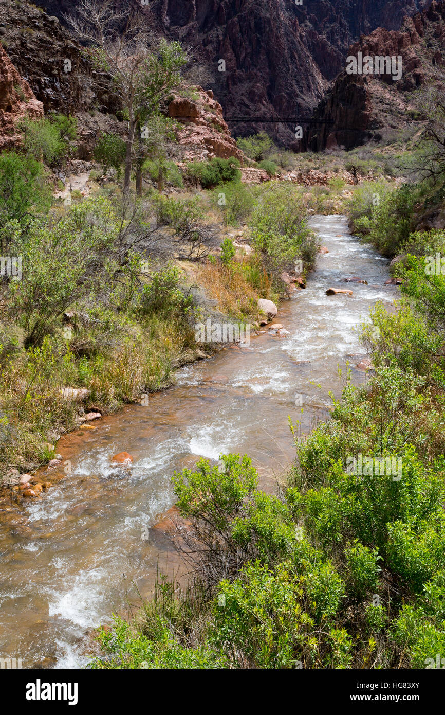 Bright Angel Creek flowing toward the Colorado River at the bottom of the Grand Canyon. Grand Canyon National Park, Stock Photo