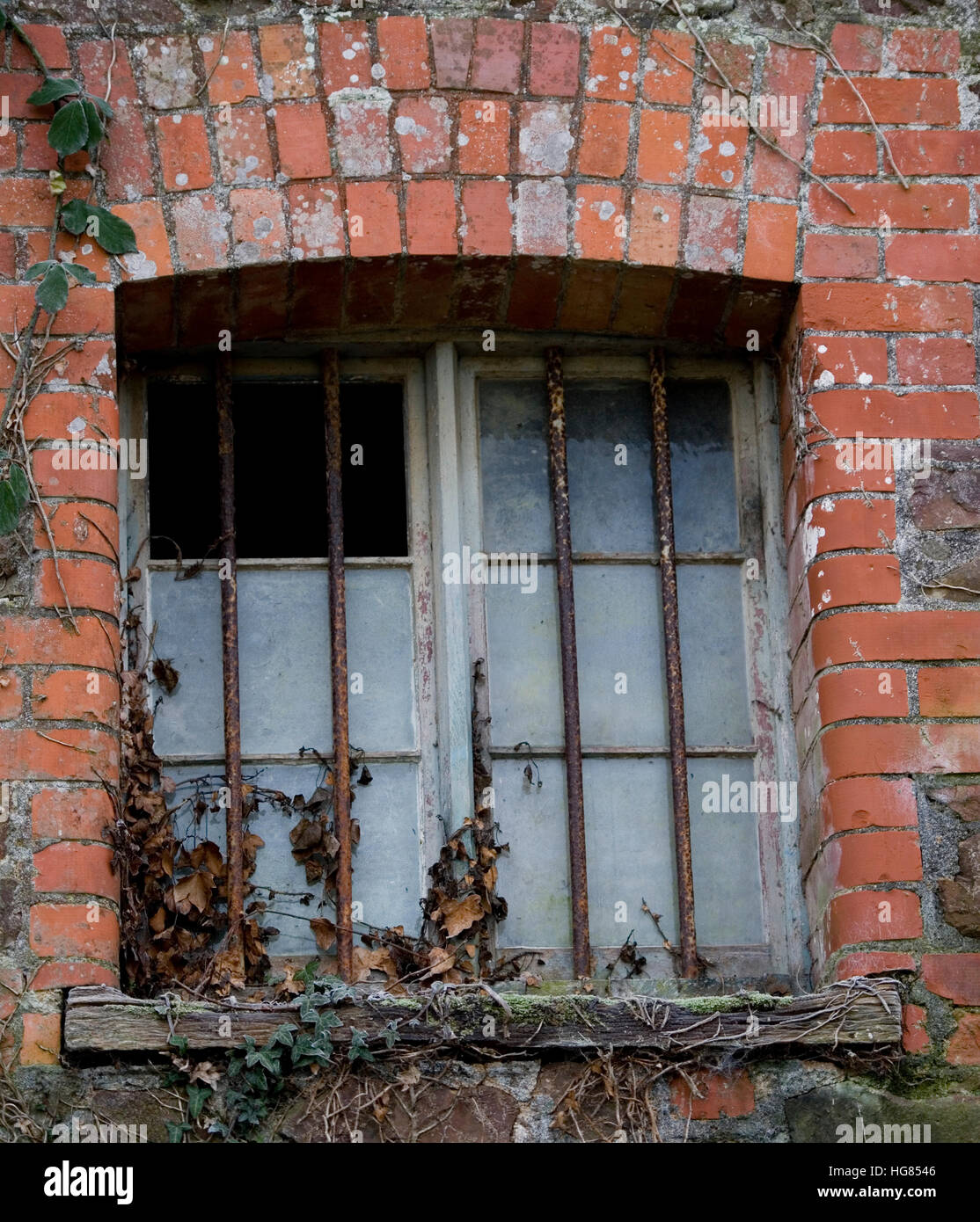 barred window in a farm building - Stock Image