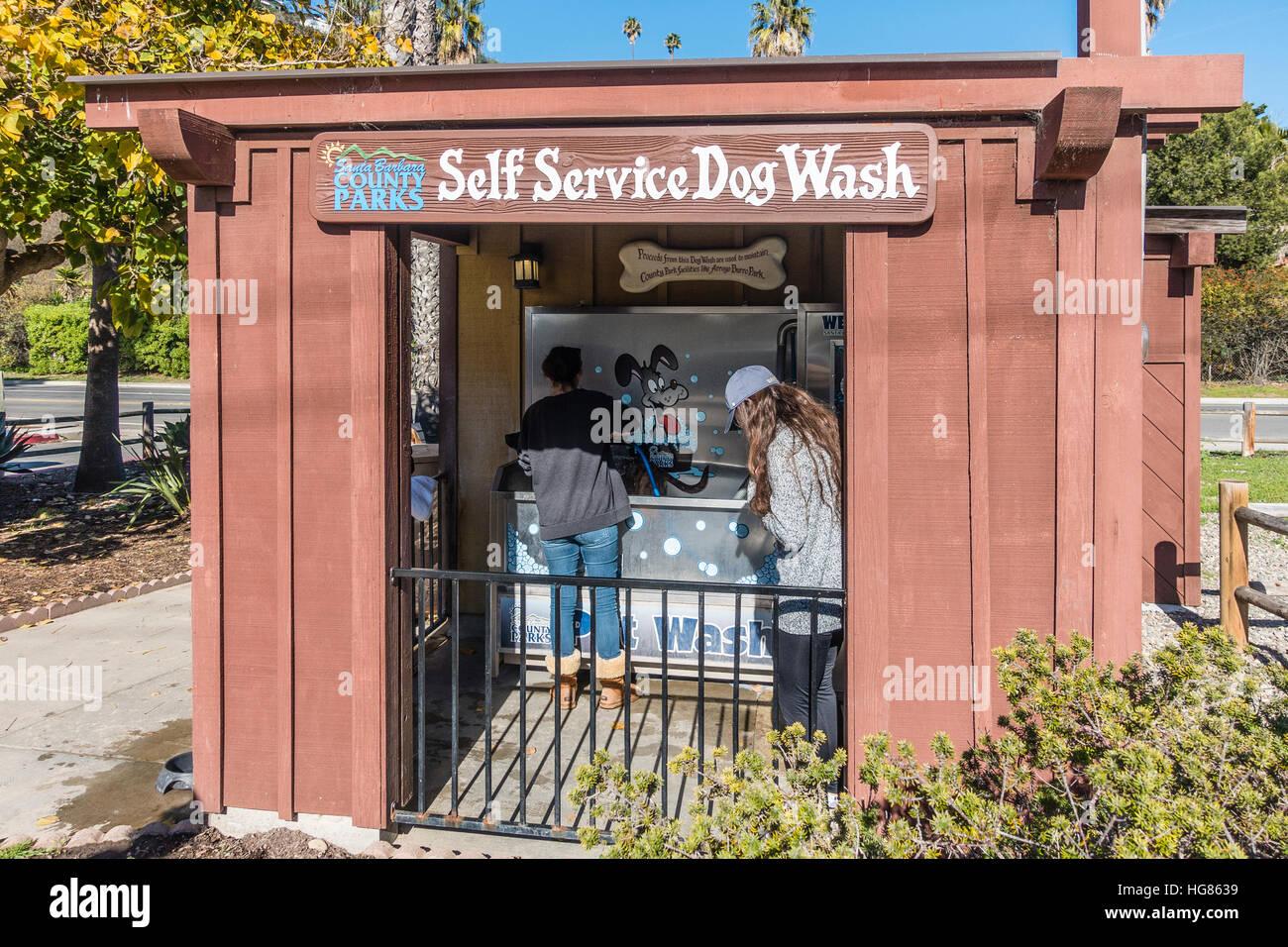 Self service dog wash stock photos self service dog wash stock a female employee washes a dog at the county of santa barbara public facility for dog solutioingenieria Gallery