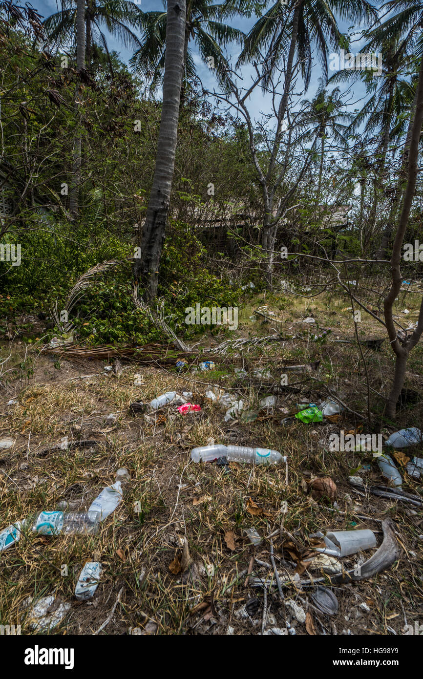 Garbage left in the beautiful tropical palm trees forest - Stock Image