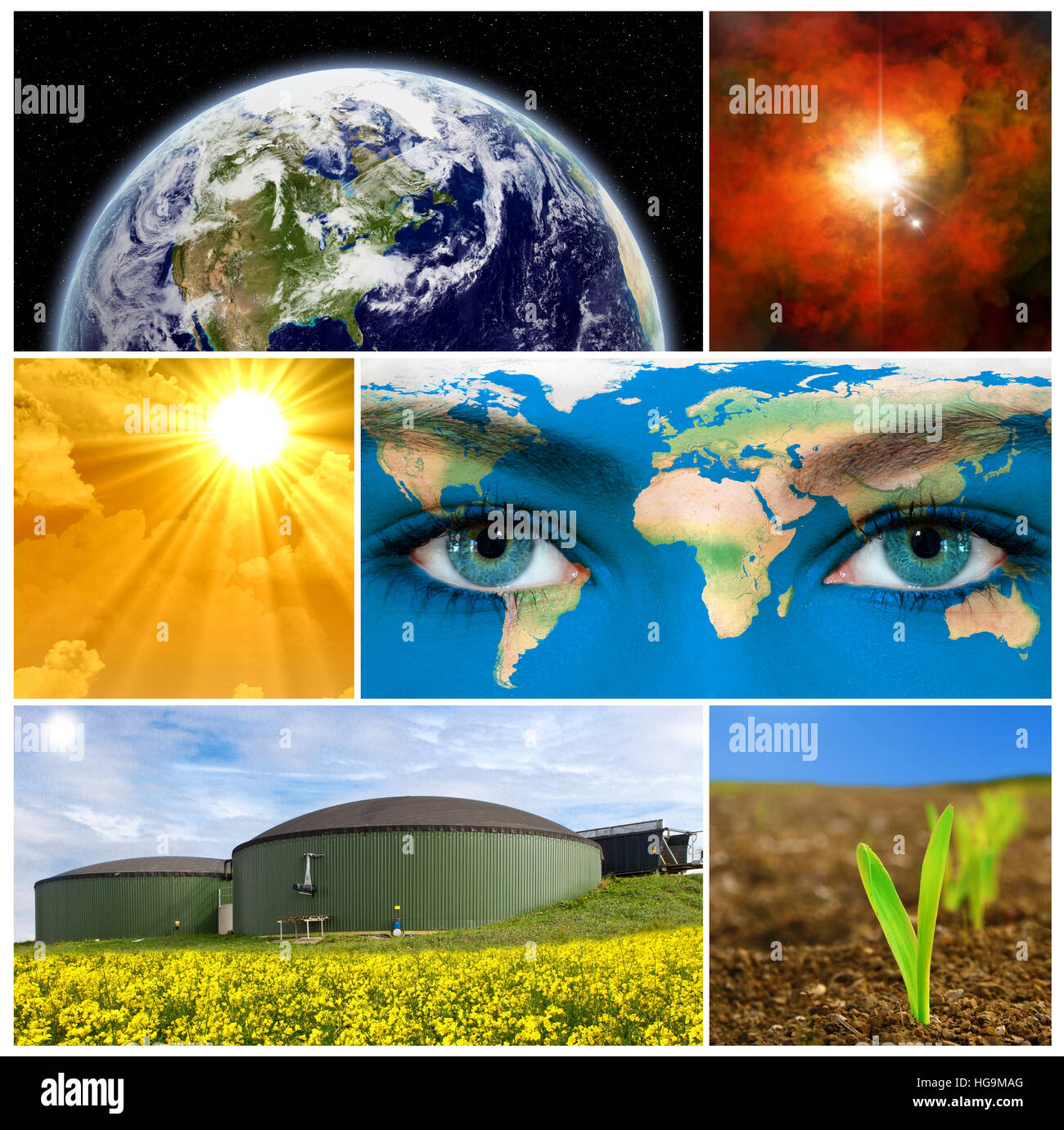 Sustainability - Stock Image