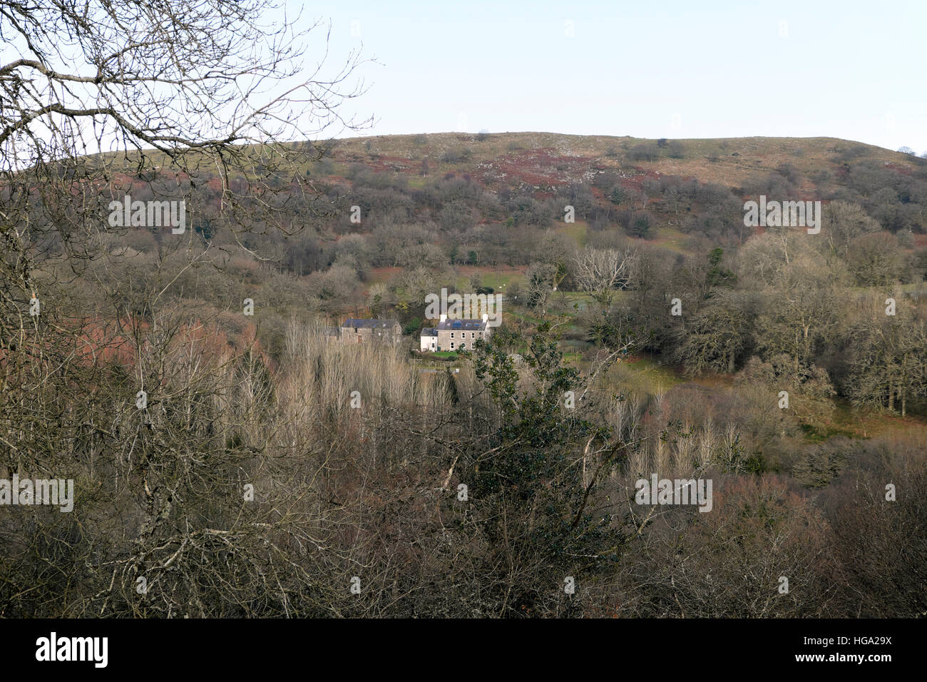 Rural homes country houses wooded landscape in Carmarthenshire countryside winter 2016 in Wales, Great Britain UK - Stock Image