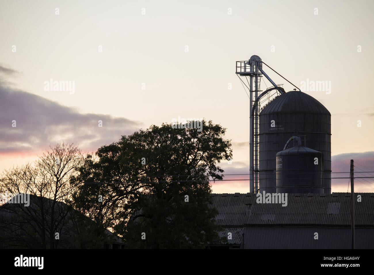 Rooftops of farm buildings and a tower silo for storing grain, silhouetted against the evening sky - Yorkshire, - Stock Image