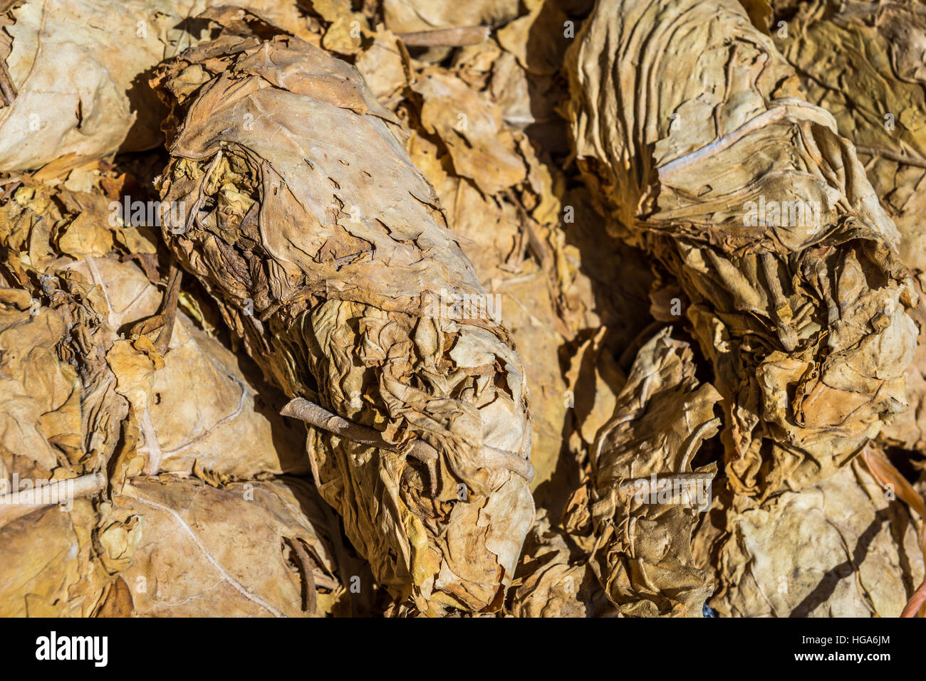 Heap pf dried tobacco leaves in Iranian shop - Stock Image